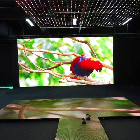 screen-LED-parrot_450